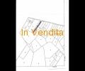 RIF 231B, TERRENO AGRICOLO/EDIFICABILE
